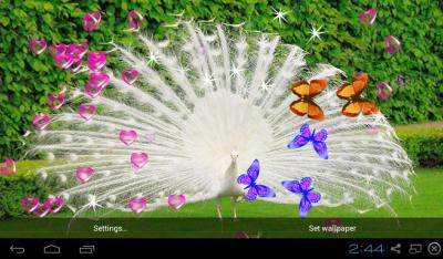 3D Peacocks Live Wallpapers - Android Apps on Google Play
