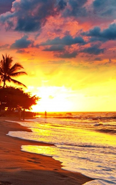 HD Beach Sunset Live Wallpaper - Android Apps on Google Play