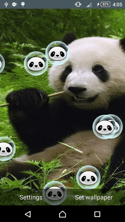 Panda Live Wallpaper - Android Apps on Google Play