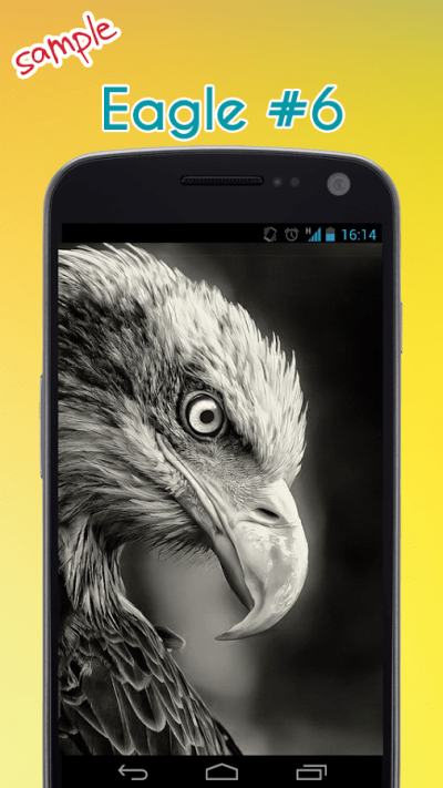 Eagle Wallpaper - Android Apps on Google Play