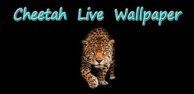 Cheetah Live Wallpaper - Apps on Google Play