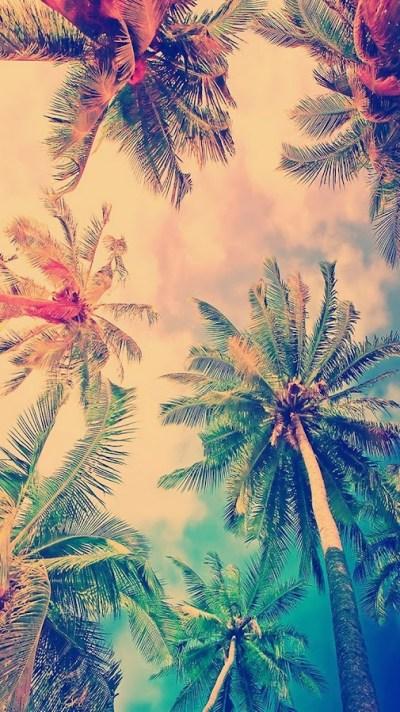 Iphone 6 Wallpaper Tumblr Summer Iphone 6 Wallpaper Tumblr Summer . Thank You…