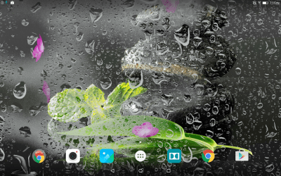 Garden Zen Live Wallpaper - Android Apps on Google Play