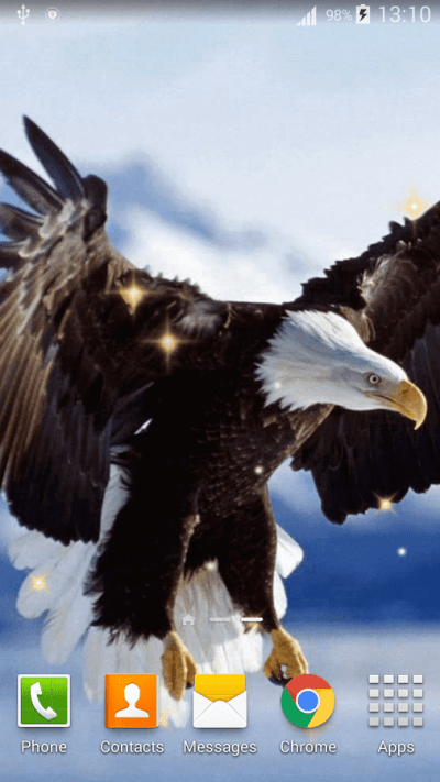 Eagle Live Wallpaper HD - Android Apps on Google Play