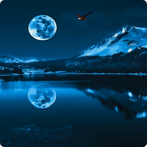 Blue Moon Live Wallpaper HD - Android Apps on Google Play