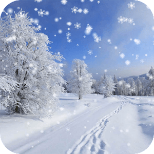 Download Winter Snow Live Wallpaper for PC