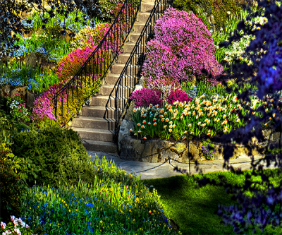 Garden Live Wallpaper - Android Apps on Google Play