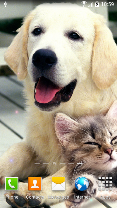 Dogs Wallpaper - Android Apps on Google Play