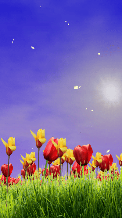 Spring Scene Live Wallpaper - Android Apps on Google Play