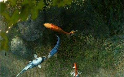 Download Koi Fish 1 live wallpaper APK on PC | Download Android APK GAMES & APPS on PC