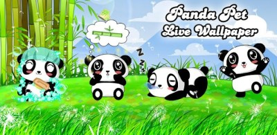 Panda Pet Live Wallpaper Free - Android Apps on Google Play