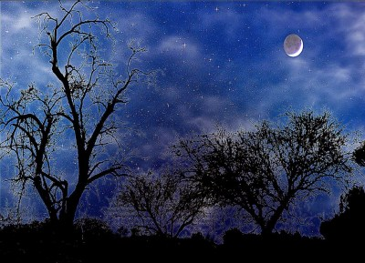 All About HD Wallpaper: Beautiful Night 3D Wallpaper Widescreen