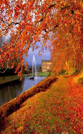 Download Autumn Live Wallpaper for PC