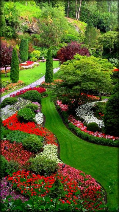 Garden Live Wallpaper - Android Apps on Google Play