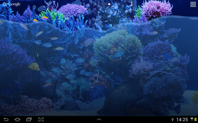 Fish Tank Live Wallpaper - Android Apps on Google Play