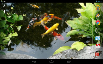 Magic Touch: Realistic Koi Live Wallpaper - Android Apps on Google Play
