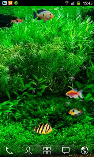 Update Fish Tank 3d Live Wallpaper apk New Version | Gogo Apk