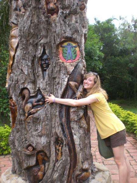 Cimg Hugging Of Trees