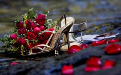 Розы (55 обоев) » Смотри Красивые Обои, Wallpapers, Красивые обои на рабочий стол