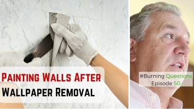 Painting Walls After Wallpaper Removal Video | Naperville Painters