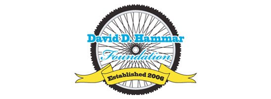 The David D. Hammar Foundation, a NJ non-profit corporation