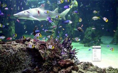 Aquarium Live HD Mac 3.1 - Download