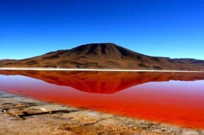 Laguna Colorada - Bolivia out of space ;D - Picture of Salar de Uyuni, Uyuni - TripAdvisor