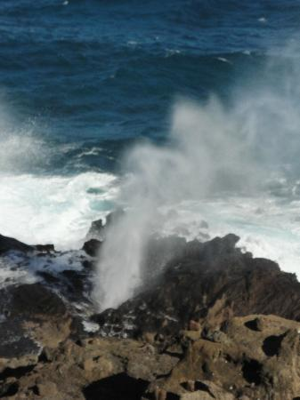 Blow hole   Oahu Island Tour   Picture of Discover Hawaii Tours     Discover Hawaii Tours  Blow hole   Oahu Island Tour