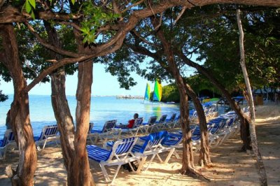 plage - Picture of Hilton Key Largo Resort, Key Largo - TripAdvisor