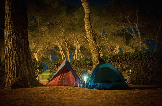 CAMPING LA PLAYA IBIZA   Updated 2018 Prices   Campground Reviews     All photos  42  42