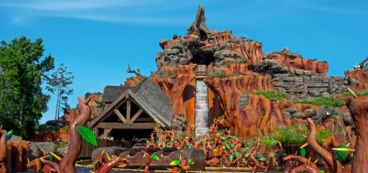 Splash Mountain is one of the favorite Disney World water rides.
