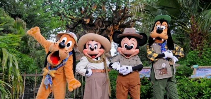 Best Possible Day At Disney S Animal Kingdom Mickeyblog Com