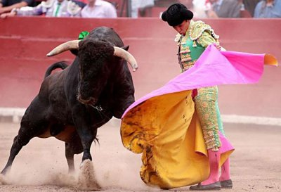 Bulls and other animals deserve better from mankind