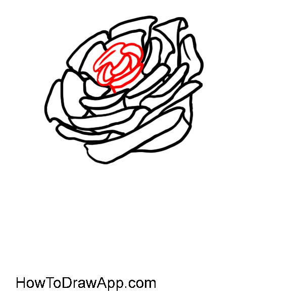 How to draw a rose 07