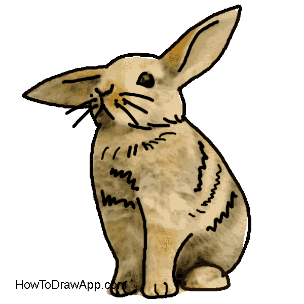 rabbit drawing for kids easy