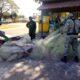 Incautan redes de pesca ilegales y detienen 11 pescadores