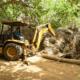 Medio Ambiente retira negocios ilegales de Playa El Valle, importante hábitat de tortugas Carey y Tinglar