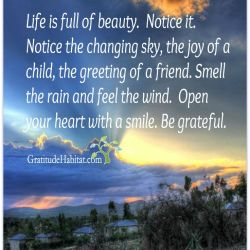 Life Quotes and Words to Live by Life Is Full of Beauty Visit Us