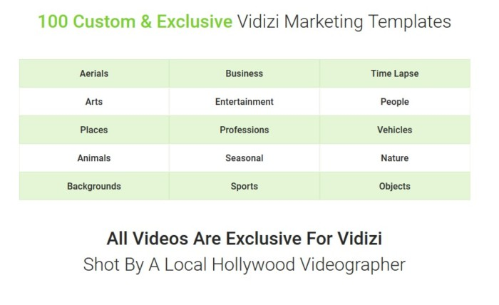 Vidizi Video Advertising Software By Jimmy Kim