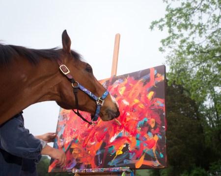Lucky Meteor Horse