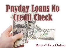 Payday Loans No Credit Check: Same Day Cash Advances