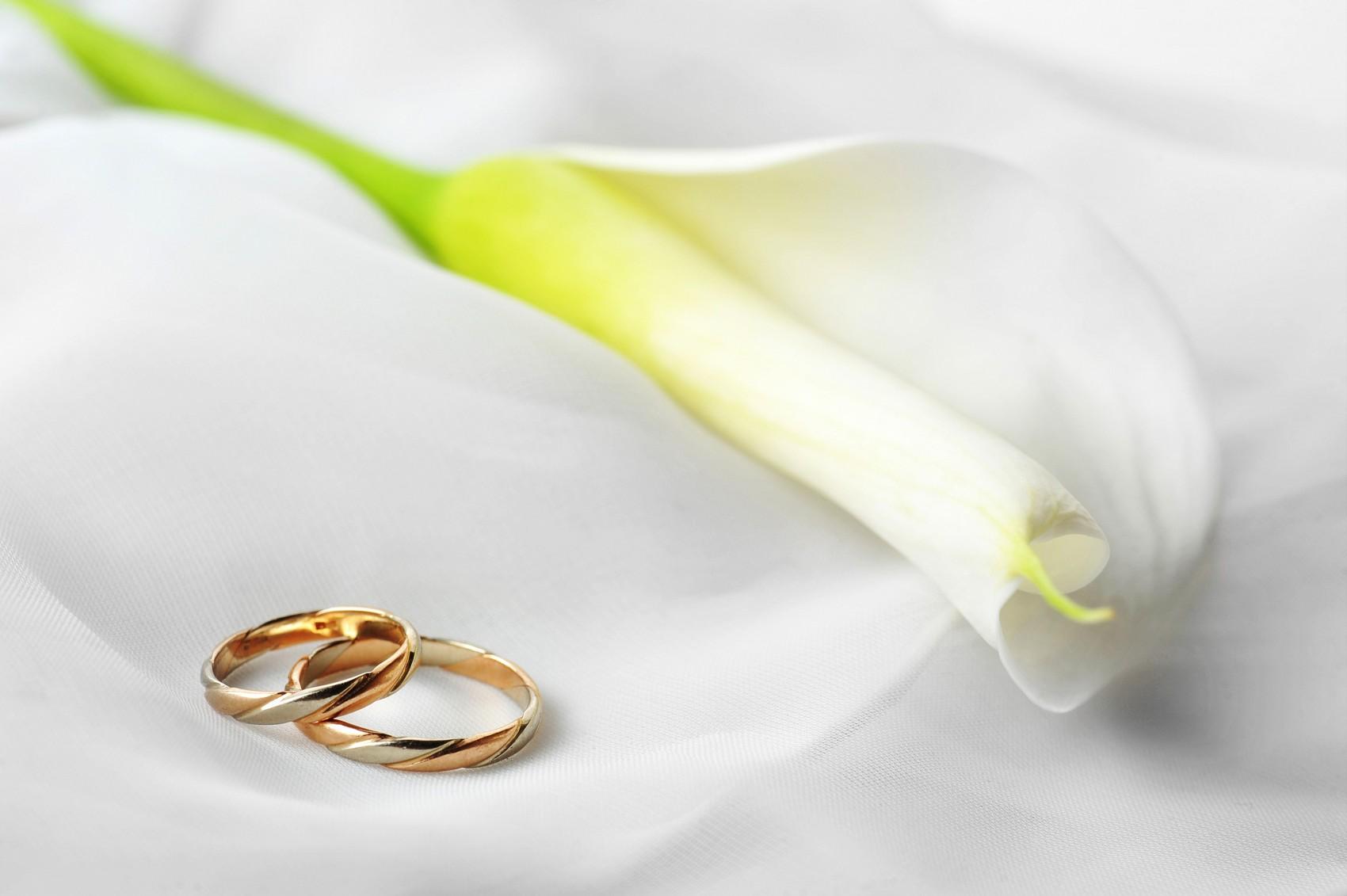 most elegant wedding rings elegant wedding rings Most Elegant Wedding Ring 2