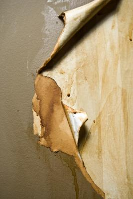 How to Prepare Walls for Paint After Removing Wallpaper | Home Guides | SF Gate