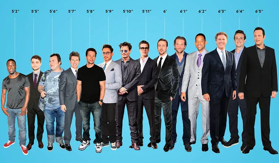 Hollywood Leading Men  Arranged by Height    Vulture Heights of various leading men
