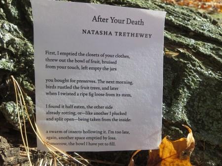 Poem Overcoming Death