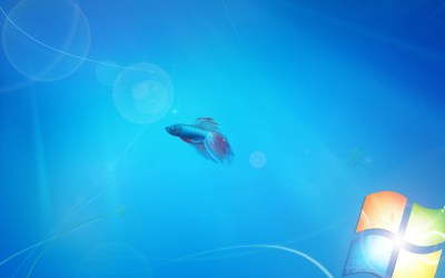 Live Wallpapers Free HD: Live Wallpaper For Windows 7