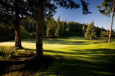 The Golf Course   Port Ludlow Resort