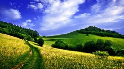 Priroda i pejzazi - Slike za pozadinu - wallpapers