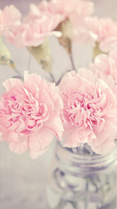 Pink Peonies iPhone Wallpaper Collection | Preppy Wallpapers