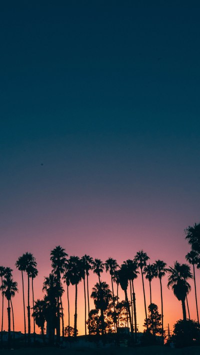 9 Summer Sunset iPhone Wallpapers To Kill That Winter Depression | Preppy Wallpapers